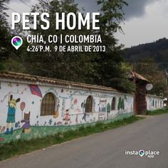Pets Home exterior
