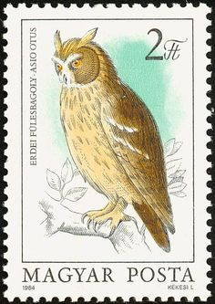 Long-eared Owl stamps - mainly images - gallery   fformat (hungary)