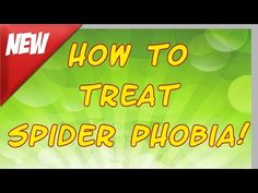 Spider Phobia (Arachnophobia) Treatment - How to overcome Spider Phobia in just a few hours