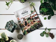 Plantzy is a simple and intuitive online sales platform for trendy, quality indoor plants at competitive prices delivered to you. Creative Workshop, Cacti And Succulents, Guide, Flourish, Indoor Plants, Tropical, Shit Happens, Shops, Events