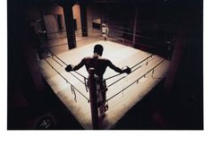 The Boxer | Photography | Z Gallerie