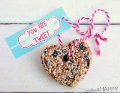 Pauline Molinari - Google+ Adorable!  Love these birdseed treats by +Alli Ward!