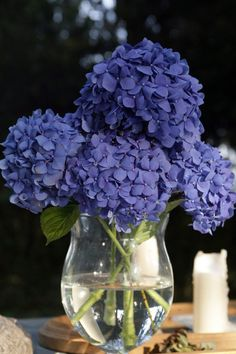 #hydrangeas #centerpiece Photography by sugarloveweddings.com Floral Design by ww.larosacaninafloristi.it Event Design by sarahberends.com  Read more - http://www.stylemepretty.com/2011/10/12/tuscany-wedding-by-sugarlove-weddings/