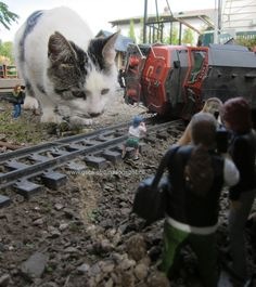 www.gscaletrain.blogspot.ca  G-Scale Train Derailment - The cat did it!