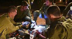 Comandos israelíes rescatan heridos de la guerra siria - ¿por qué arriesgan sus vidas por militantes islámicos?