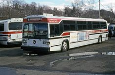Express Bus, Buses, Nyc, New York City