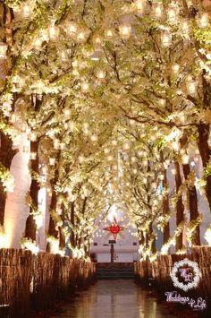 Matrimonio › › Cerimonia Decorazioni