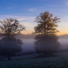 Entre les deux by Lari Huttunen - Purchase prints & digital downloads Online Photo Gallery, Rising Sun, Mists, Photo Galleries, Sunrise, Digital, Outdoor, Image, Outdoors