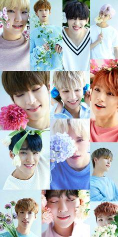 Seungkwan, Wonwoo, Jeonghan, Seventeen Lee Seokmin, Seventeen Woozi, Seventeen Album, Carat Seventeen, Seventeen Wallpapers, Group Pictures