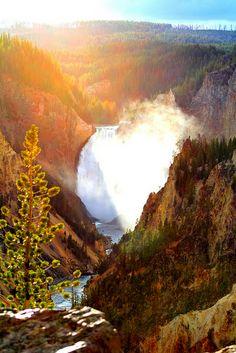 Grand Canyon of Yellowstone, Wyoming