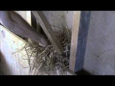 An instructional video by Cedar Ridge Farm (http://cedar-ridge-farm.blogspot.com) Light straw clay, also known as slip straw, is a healthy and simple material for filling interior (and exterior) walls. The process of packing the straw-clay mixture into the walls requires only simple tools and labor. In this video, we describe and demonstrate ...