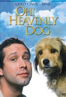 "Heavenly Dog ""Saturday Night Live"" alumnus Chevy Chase shares top billing with one of America's most recognizable dogs in this lighthearted comedy-mystery co-starring Jane Seymour, Omar Sharif and Robert Morley. Blockbuster Movies, 80s Movies, Movies To Watch, Movie Tv, Barbara Leigh, Dog Trailer, Scruffy Dogs, Famous Dogs, Chevy Chase"