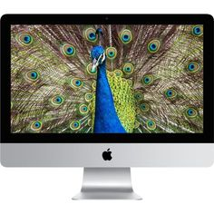 "Apple Tout en Un iMac 21.5"" MK452FN/A pas cher - PetitBuzz ❤"