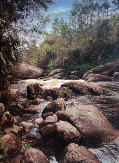 Rio das Pedras. Parque Nacional de Itatiaia - RJ. Pintura Hiperrealista em óleo sobre tela. Arnaldo Quintella