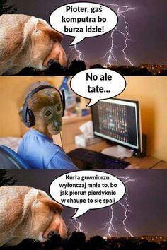 Dark Net, Polish Memes, Funny Mems, Meme Lord, Monster Hunter, Best Memes, Fnaf, Animals And Pets, Jokes