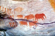 Risultati immagini per picturi rupestre africa de sud Westerns, La Colonisation, Paleolithic Art, Art Rupestre, Cave Drawings, Art For Art Sake, Day Tours, Ancient Art, Rock Art