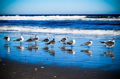 Anastasia Island, Florida near St. Augustine; this is a National Beach and is truly a national treasure!