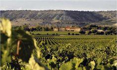 Abadía Retuerta wineries (Valladolid, Spain)  http://www.rusticae.es/bodegas-rusticae-espana/valladolid-bodega-abadia-retuerta