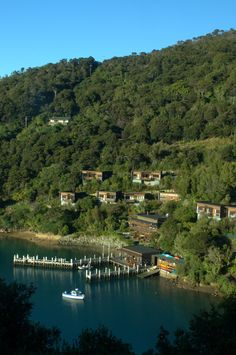 Marlborough Sounds, Upper South Island - - -so many beautiful tree clad hills and sheltered inlets - and some holiday homes nestled on hillsides.