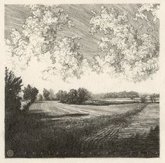"""""""Two Fields,"""" 5 x 5 in, Pencil, 2013 on Behance"""