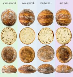 Breadmaking How to Troubleshoot Bad Bread recipes backen backen rezepte bread bread bread Baking Tips, Bread Baking, Yeast For Bread, Baking Bad, No Knead Bread, Artisan Bread Recipes, Bon Dessert, Bread And Pastries, Breakfast Pastries