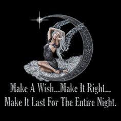 Bonnes Album-souvenir de la nuit