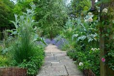 High Wycombe Garden including wildflowers, rolling pasture, stone terrace and long formal pond designed by James Alexander-Sinclair Pond Design, Garden Design, High Wycombe, Herbaceous Border, Potager Garden, Green Garden, Edible Garden, Garden Beds, Garden Inspiration