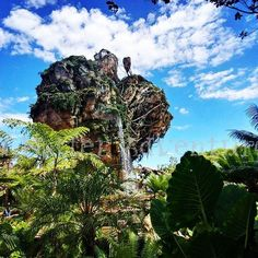 Reposting @madhatteradv: I LOVE Pandora!  Its absolutely beautiful!  @visitpandora @Disney #Pandora #Avatar #visitpandora #worldofavatar #disney #disneyworld #blog #waltdisneyworld #blogger  #animalkingdom #wanderlust #travel #travels #traveler #trip #vacation #travelgram #igers #Insta #Instagram #Orlando #Florida #beautiful #love #blessed #amazing #awesome