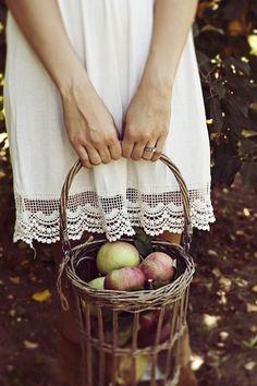 apple picking in October