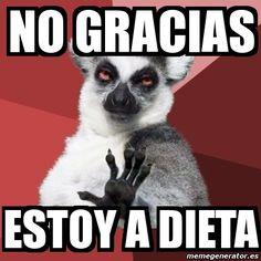 11 Best Meme Dietas Images On Pinterest Jokes Diets And Chistes