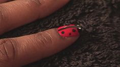 Ladybird nail tutorial - Videojug
