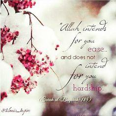 Islam Beliefs, Islamic Teachings, Islam Religion, Islam Muslim, Islam Quran, Allah Quotes, Muslim Quotes, Quran Quotes, Allah Loves You