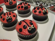 Ladybug cupcakes... for the bug party but I did mini cupcakes (very cute).