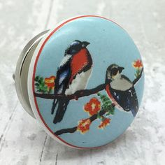 Colourful Bird Draw Knob | Colorful birds, Door knobs and Draw knobs