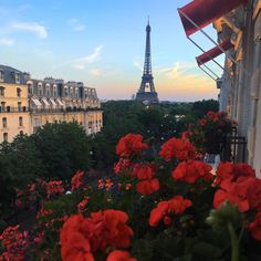 paris france images, image search, & inspiration to browse every day. Oh The Places You'll Go, Places To Travel, Travel Destinations, Beautiful World, Beautiful Places, Belle Villa, Travel Aesthetic, Adventure Is Out There, Wonders Of The World