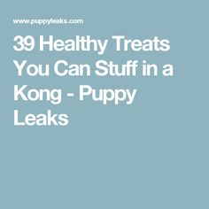 39 Healthy Treats You Can Stuff in a Kong - Puppy Leaks