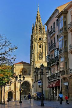 Catedral de San Salvador. Oviedo. Asturias. Spain.