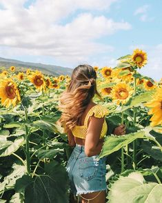 bilder Pictures Use of Fountains and Statuary in English Monastic Gardens Article Body: Few exact re Photo Summer, Summer Pictures, Summer Instagram Pictures, Sunflower Field Pictures, Shotting Photo, Sunflower Photography, Instagram Pose, Instagram Travel, Disney Instagram