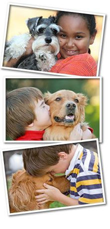 Full service veterinary medical facility serving the animal healthcare needs of dogs, cats and other small mammals.