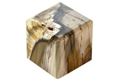 Petrified Wood Cube Paperweight