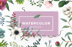 Watercolor Flowers Mix by Kotulska on @creativemarket