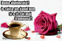 Buna dimineata Tatty Teddy, Good Morning, Food And Drink, Tableware, Blog, Coffee Time, Selfie, Facebook, Quotes