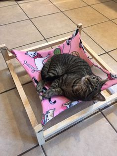 Oh man this is awesome! And HortonCats is a great Etsy shop. Need to get one of these for the kitties!! Suburban Cat Hammock on Etsy, $30.00