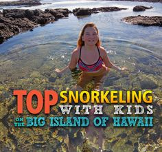 Top Snorkeling Spots with Kids on the Big Island of Hawaii - Island Adventure Kids