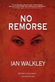 Kirkus Review of No Remorse.