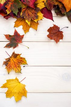 Autumn background with colorful leaves on wooden background Cute Fall Wallpaper, Iphone Wallpaper Fall, Halloween Wallpaper Iphone, Flower Background Wallpaper, Print Wallpaper, Cellphone Wallpaper, Flower Backgrounds, Wallpaper Backgrounds, Attractive Wallpapers
