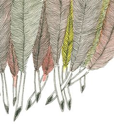 Google Image Result for http://jopole.files.wordpress.com/2010/03/feathers_detail.jpg