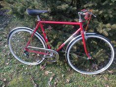 Bicicletta tipo condorino anni 70 Welter di Rimontainbici su Etsy