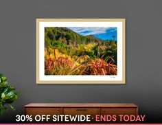 Discover «Alpine forest scenery at Wilson Bay in New Zealand», Numbered Edition Fine Art Print by Daniela Constantinescu - From $24.9 - Curioos
