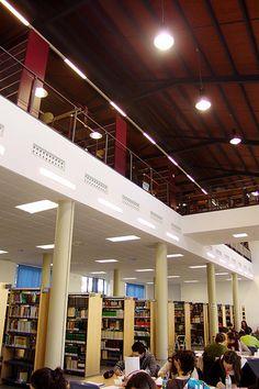 Biblioteca de Derecho y Cc. del Trabajo. Universidad de Sevilla. Sala de lectura. Vista de la zona abierta.